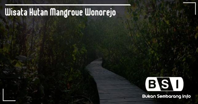 Wisata Hutan Mangrove Wonorejo, Surabaya